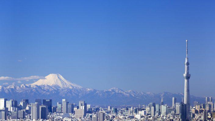 Japón : 10 días